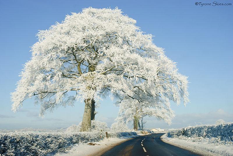 Severe hoar frost