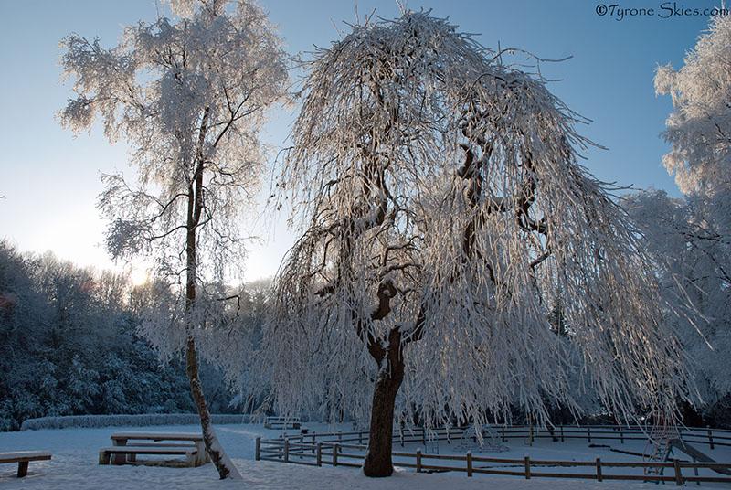 - Severe Winter 2010/2011