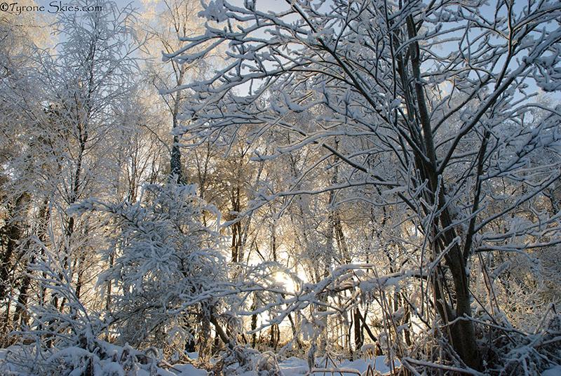 Ulster Amercian folk park winter