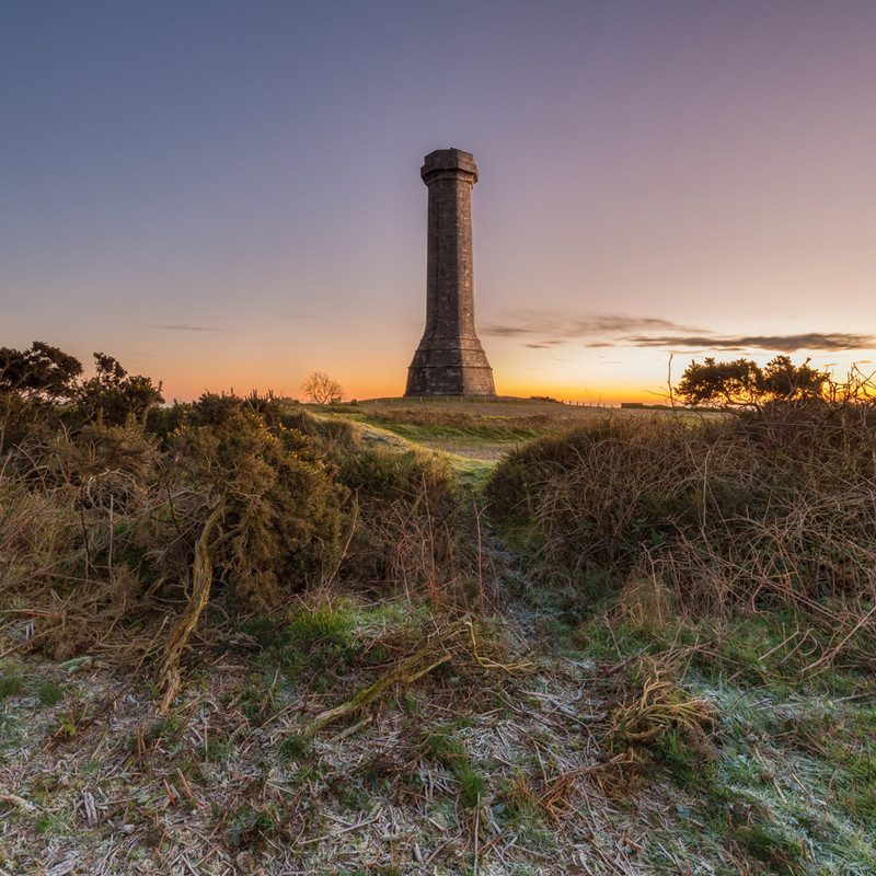 Hardy Monument, Dorset - Dorset Landscapes