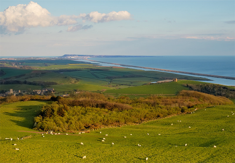 Golden Hour from Wears Hill, Abbotsbury, Dorset. - Dorset Landscapes