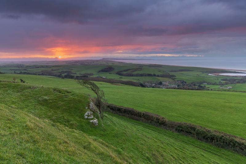 Wears Hill Sunrise, Abbotsbury, Dorset - Dorset Landscapes