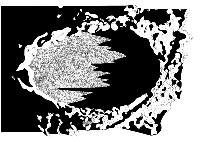 Plato (Ink Drawing) - Milan Blazek's Ink Drawings