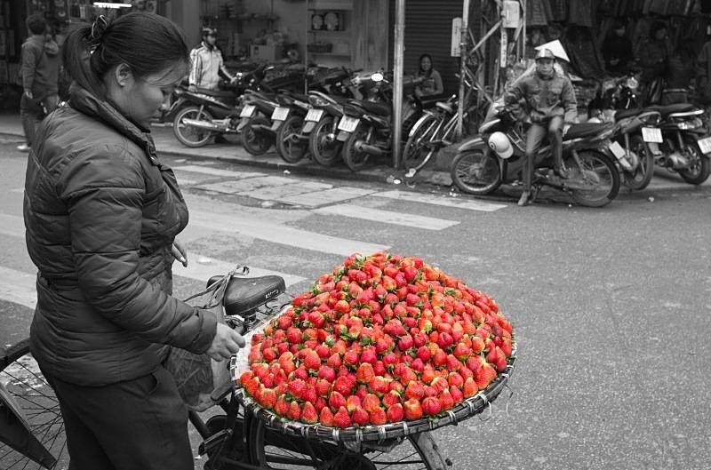 Hanoi - the strawberry seller - Vietnam January 2013