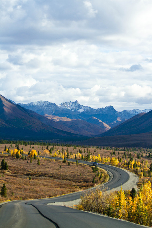 Denali National Park - For Sale Scenery Photography