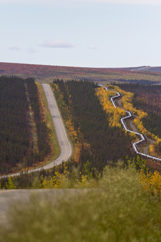 Dalton Highway and Alaska Oil Pipeline Vertical - For Sale Scenery Photography