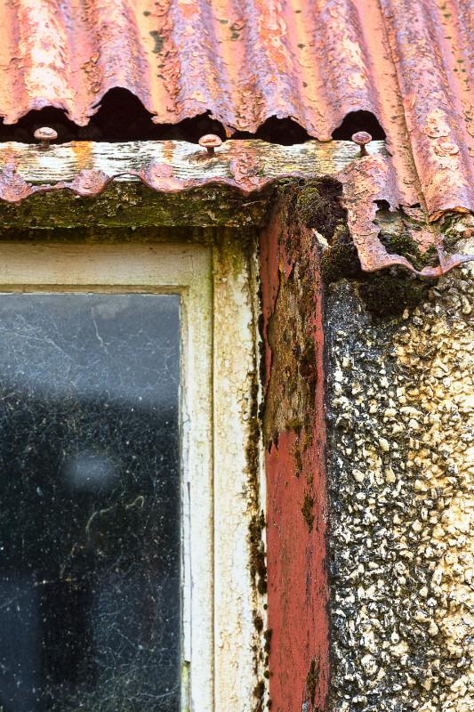 Cobwebs - Dereliction.