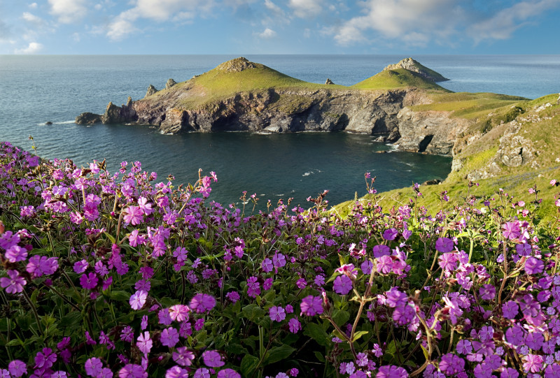 The Rumps - Cornwall  TWO .