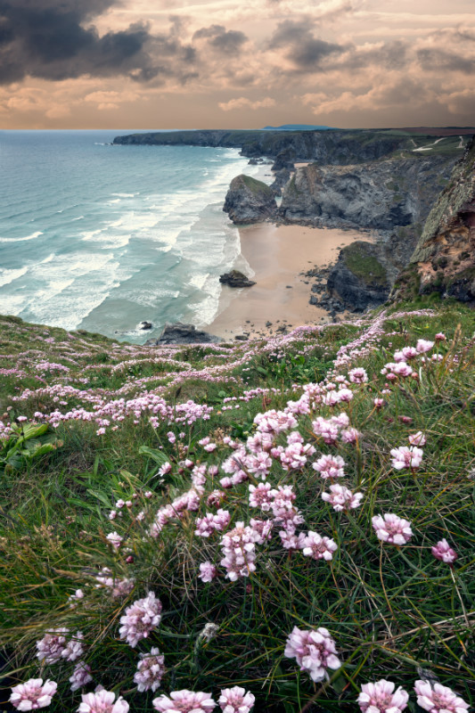 Hello Spring . - Cornwall four