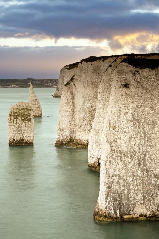 Dorset Might - Dorset