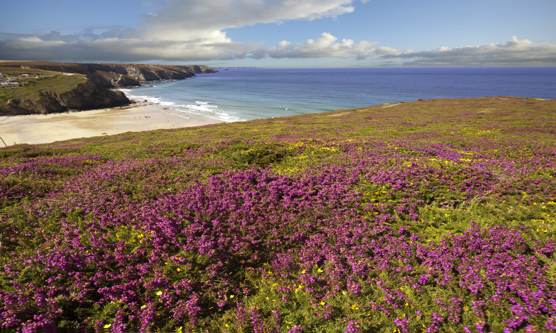 Colours Of Cornwall - Cornwall  TWO .