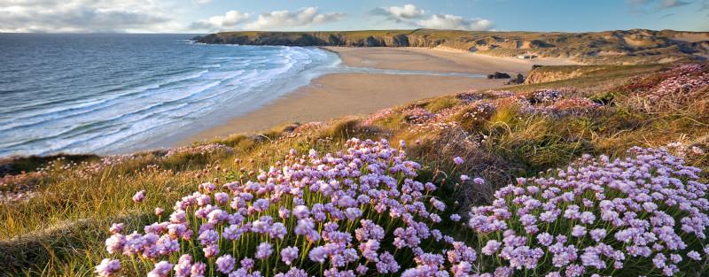 Sea Dreamer - Cornwall
