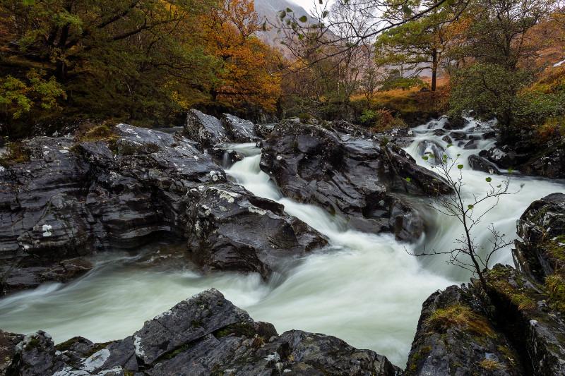 Bursting Out. - Scottish Highlands