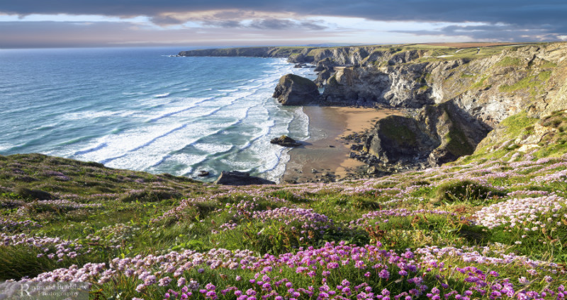 Treasures Of Nature - Cornwall four