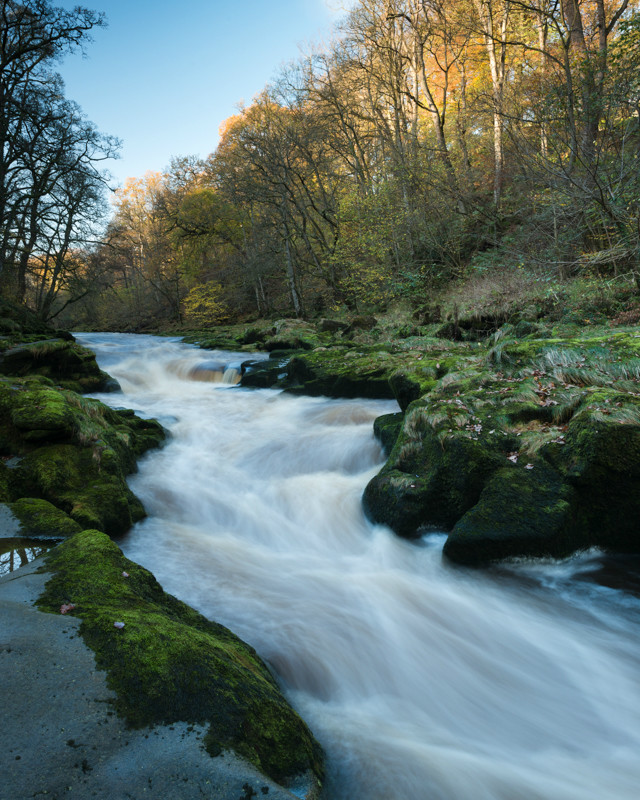 Afternoon light at The Strid - Latest Work