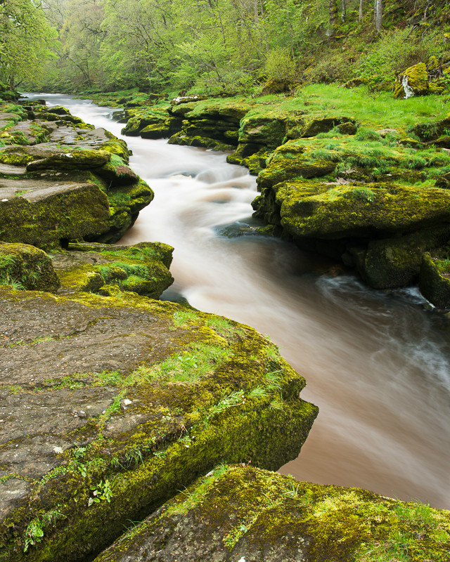 The Strid Wharfedale - Yorkshire Dales