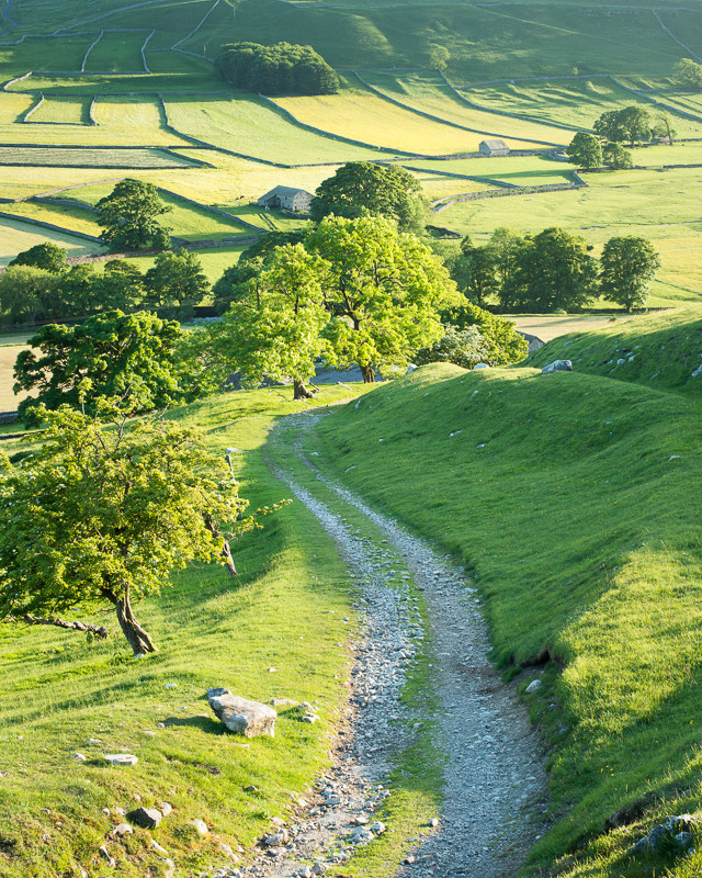 Summer evening above Arncliffe - Yorkshire Dales