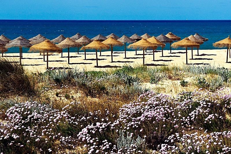 Tomato Beach - Vilamoura - Beaches