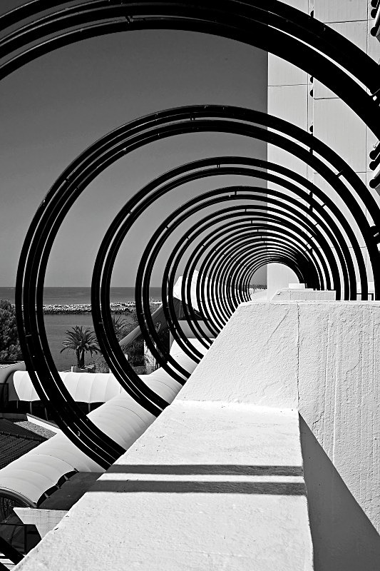 Concentric Circles - Black and White