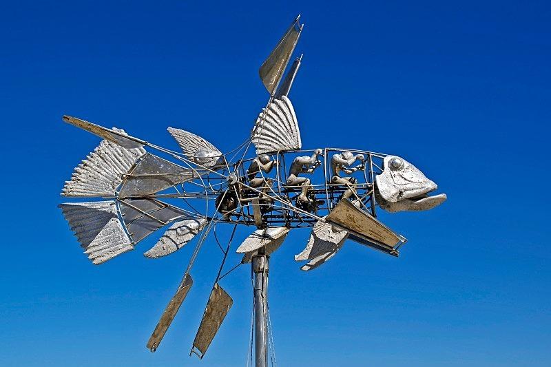 Flying Fish - Miscellany