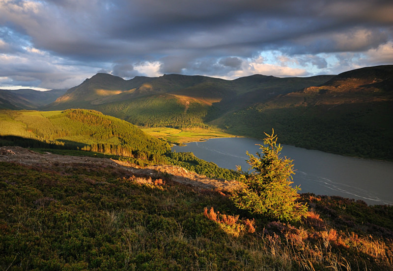 Ennerdale Forest - Rivers and Valleys