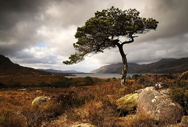 Loch Maree - Fisherfield & Letterewe