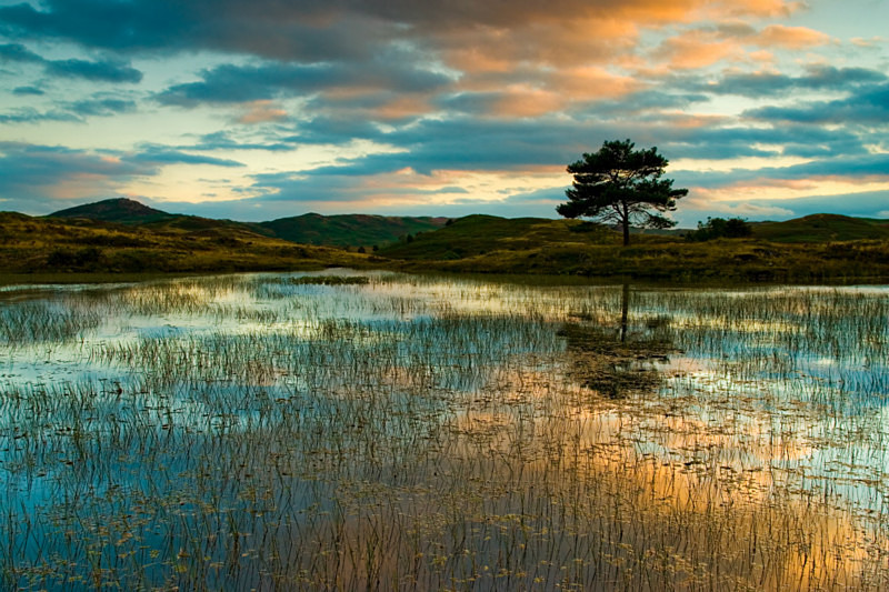 Almost Autumn - Lakes, Tarns and Waters