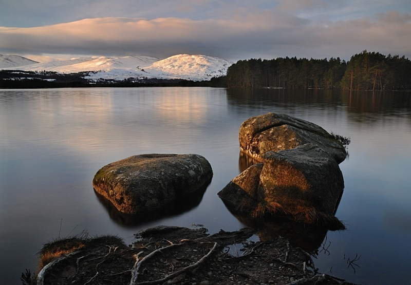 Loch Garten - Cairngorms