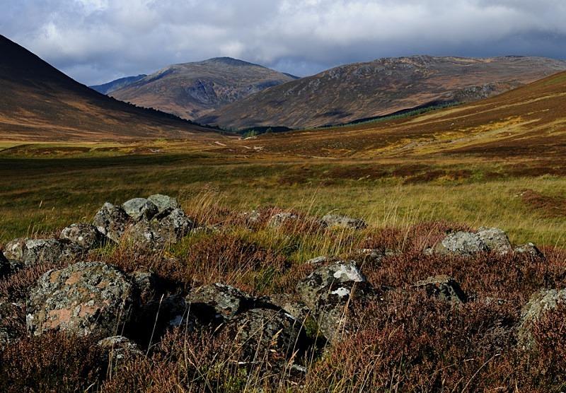 Glen Luibeg - Cairngorms