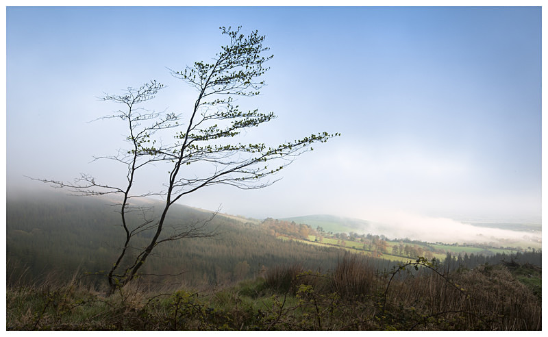 Early Morning in the Blackstairs, Co Carlow - Leinster's Wild Landscape