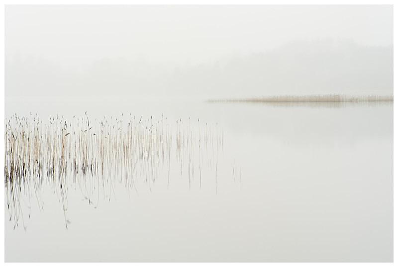 Lough Meelagh, Co Roscommon - Connaught's Wild Landscape