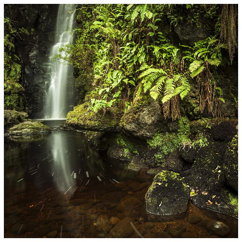 Cranny Falls, Carnlough, Co Antrim - Ulster's Wild Landscape