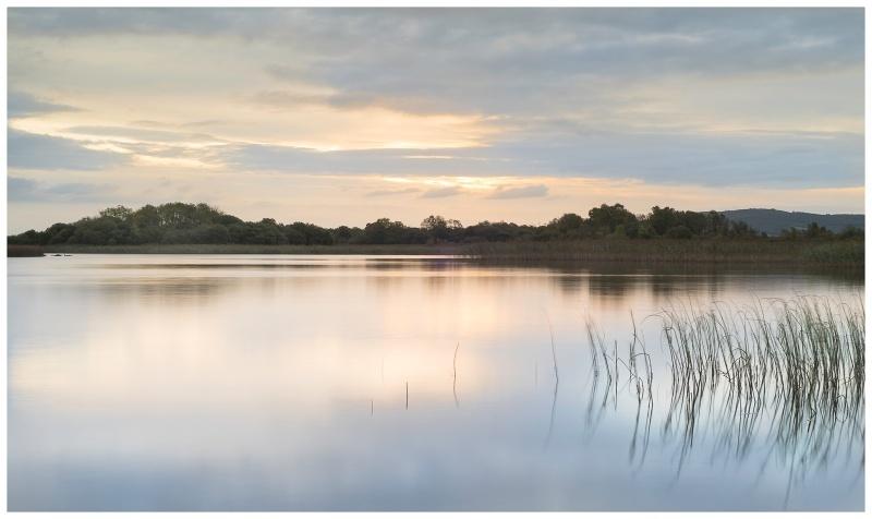 Daybreak over Lough Sheelin, Co westmeath - Leinster's Wild Landscape