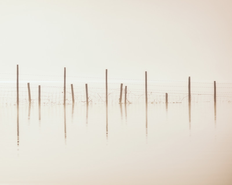 Fenceline, Ullswater - Abstracts