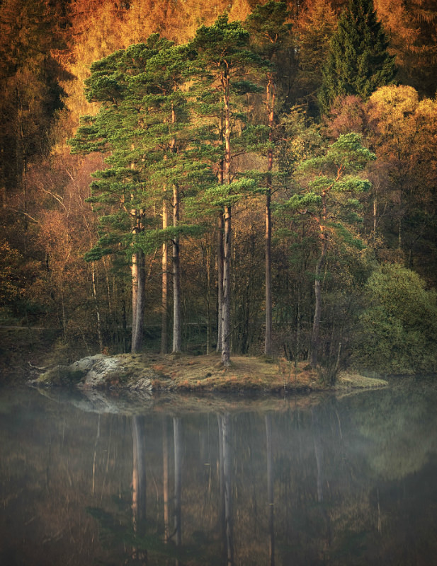 Tours tarn hows seven on Lake District photography tour