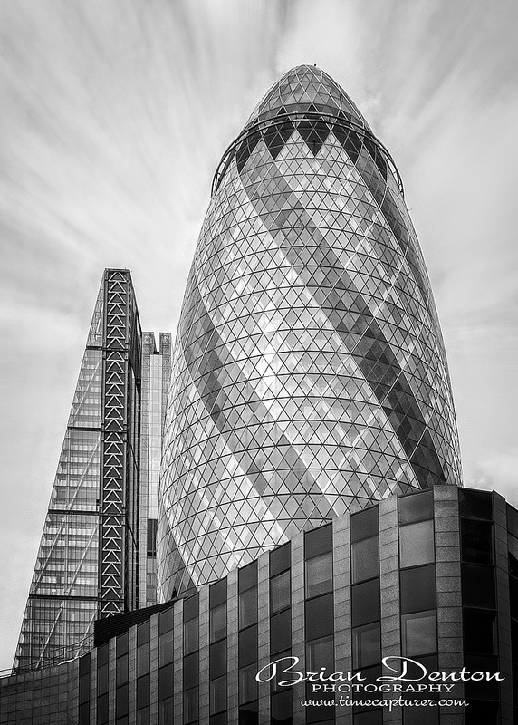 Gherkin With Cheese MONO - Monochrome (Black & White)