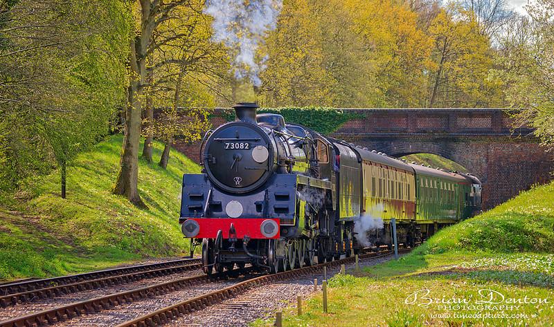 Spring Steam - Aircraft & Locomotives