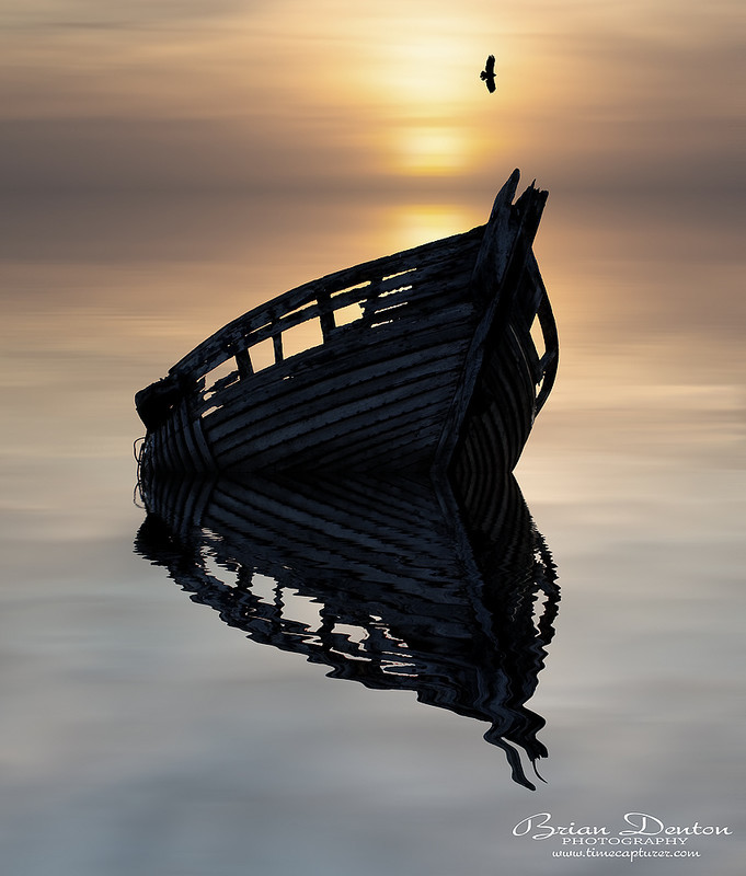 The Bird And The Boat - Creative