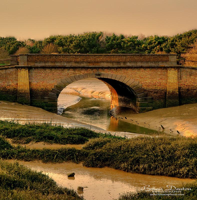 Golden Mud - Adur Valley & Shoreham-by-sea