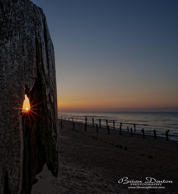 Suns Eyelashes - Coast & Shoreline