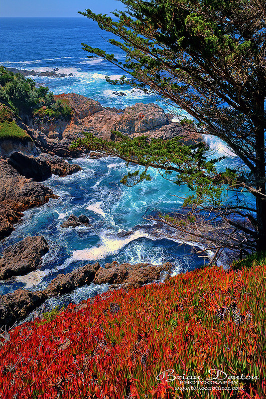 Surfs Up - Coast & Shoreline