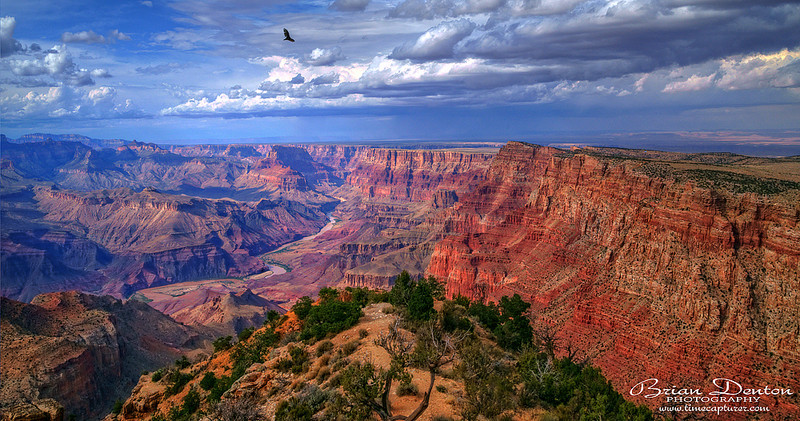 Wings Over The Canyon - USA (Inc. The Grand Canyon)