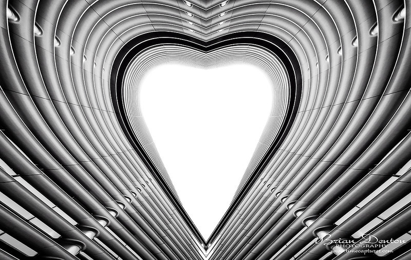 Hearts - Monochrome (Black & White)