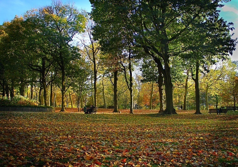 Cinquantenaire Park - November 2012 - Autumn