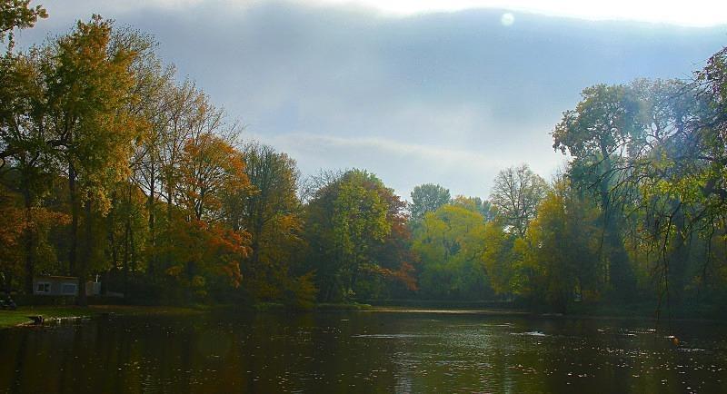Foret des Soignes, Belgium - October 2012 - Autumn