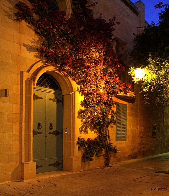 - Streets of Mdina - Stephanie Mizzi