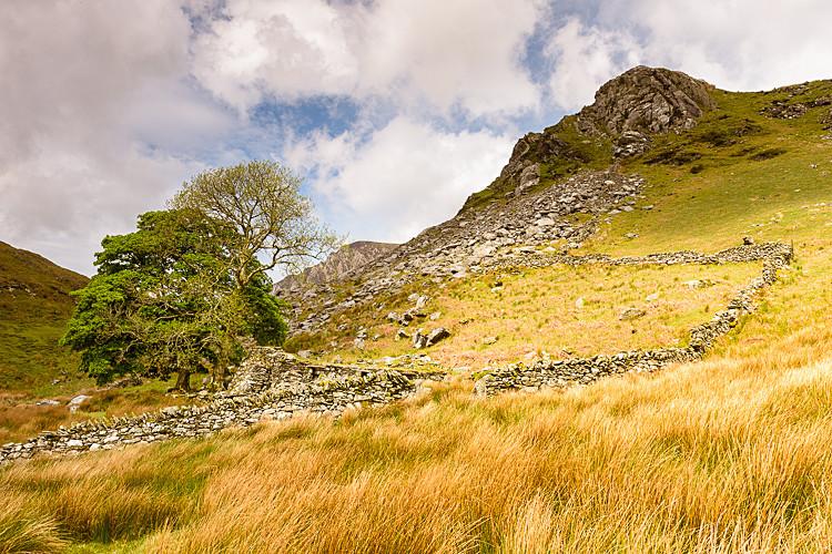 View from Llyn Dywarchen - Wales