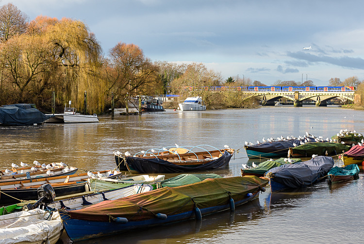 Boats on the Thames at Richmond (3) - Other locations