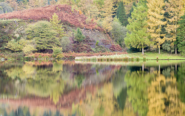 Reflections in Trentabank Reservoir (8) - The Langley Reservoirs