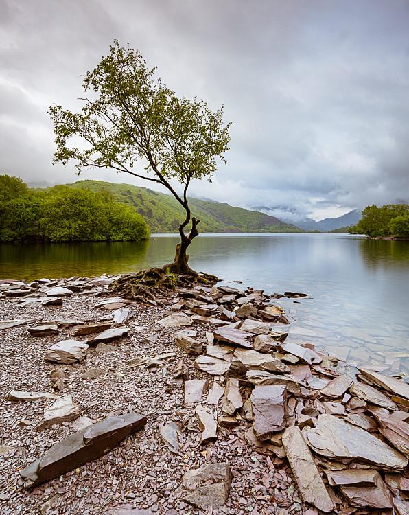 Llyn Padarn (1) - Wales